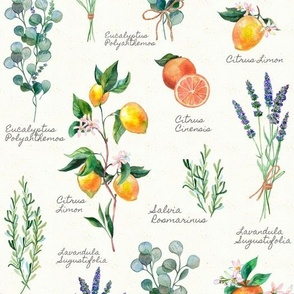 Aromatherapy with Texture and Text