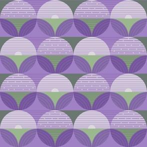 Lavender Fields Medium