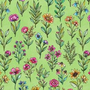 field of flowers green