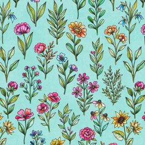 field of flowers blue