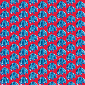 Armadillo, Blue on Red.