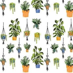 Plant Power - White Background