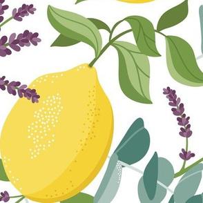 Aromatic - Citrus Aromatherapy White Large Scale