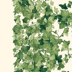 Romantic English Ivy Border Print _ Cosmic Latte _ Copyright Peacoquette 2020