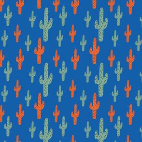 Armadillo Cactus