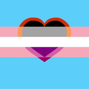 Trans with Lesbian Ace heart mask