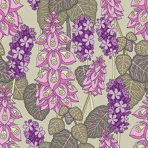 """Clary Sage and Lavender (12"""") - green"""