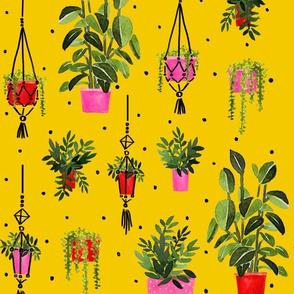 Plant Power - Mustard Background