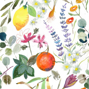 Aromatherapy Garden in watercolor