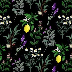 Aromatherapy Herbs black