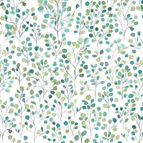 eucalyptus aromatherapy