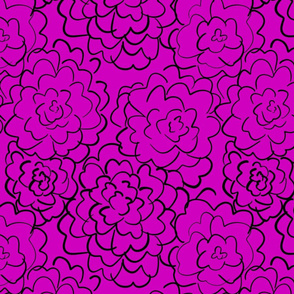 wild roses in dark pink
