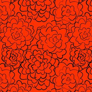 wild roses in deep orange
