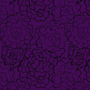 wild roses in deep purple