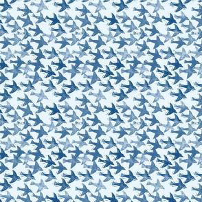 raven pale blue background