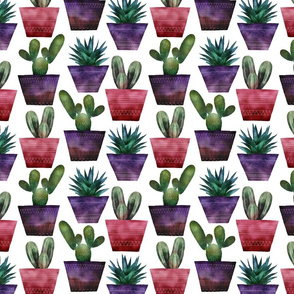 Cacti pattern colourful digital watercolour