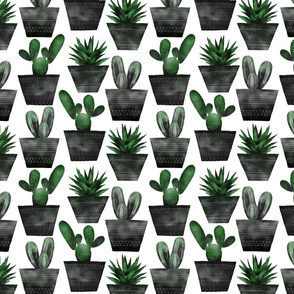 Cactus pattern black and green digital