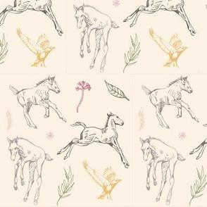 friendly foals-01