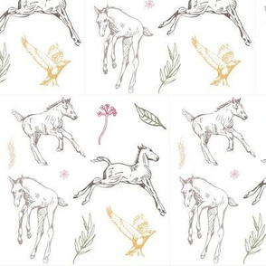 friendly foals-02-01