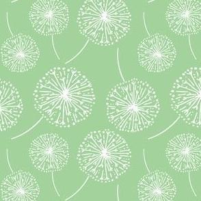 Dandelion clocks white on green (small)