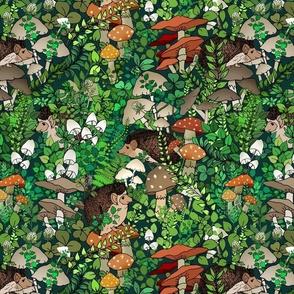 Hedgehog Hideaway in the Land of Wild Mushrooms