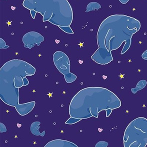 Manatees at Night