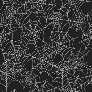White Spider Web on Black|Renee Davis