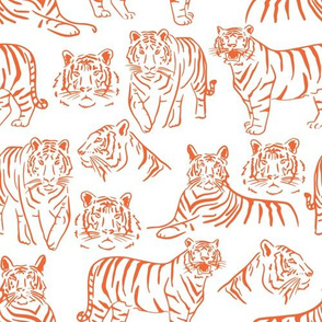 Orange and Purple Team Color Tigers 1