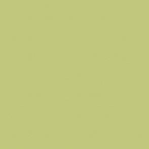 Celery Green Tone on Tone