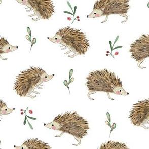 Hedgehog-and-foliage