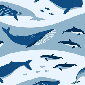 Whale Songs in Blue Waves (Large scale)
