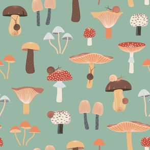 Mushrooms and Snails