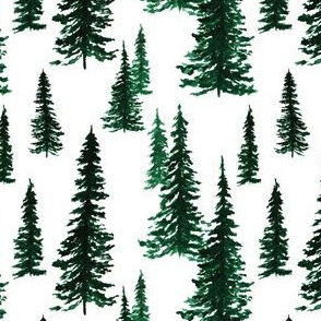 Christmas Tree Farm A| Dark Evergreen Trees|Renee Davis