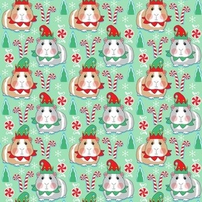 small elf guinea pigs on mint green
