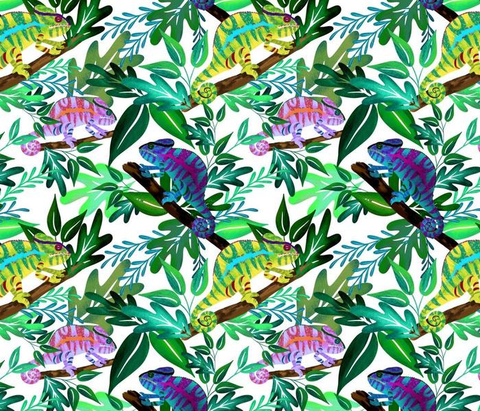 Tropical Chameleons