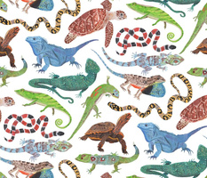 Endangered Reptiles Around the World