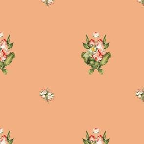 Hudson Floral Minimal in Peach