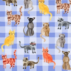 Dotty For Cats - Gingham