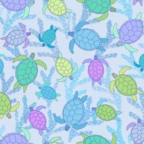 Turquoise Tortoise