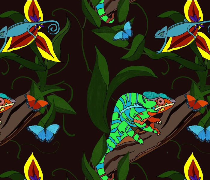 Chameleons and Butterflies