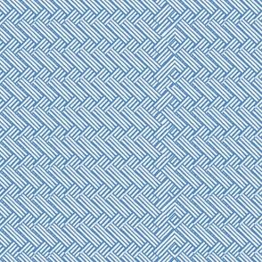 Jasper Weave in Blue
