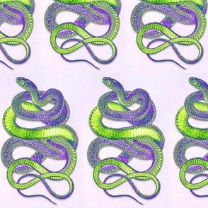Purple Green Snake Drop Repeat