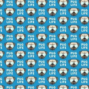 """(3/4"""" scale) Pug Life - cute pug face - blue w/ glasses C20BS"""