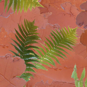 clay and ferns texture