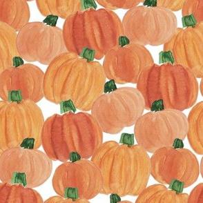 pumpkin patch (small)
