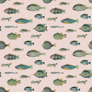 poissons, blue and green on pink