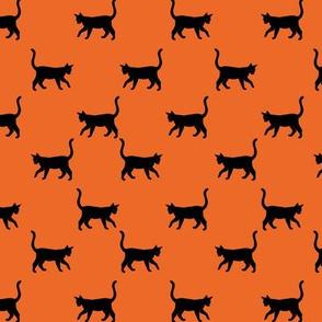 Black Cats on Orange