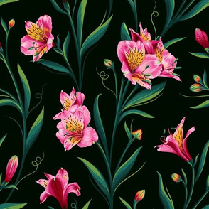 Lily of Peru