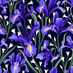 Iris blue & Bluebells