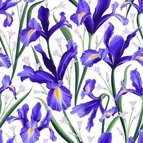 Iris Blue & Bluebells White